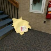 Follow big origami turtles all the way to 4th floor!