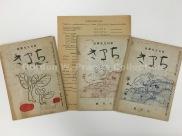Magazines published in Fukushima