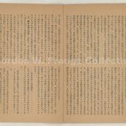 """""""Atarashiki seiji to jyosei no kadai"""" (Prange Call No. HQ-0400)"""
